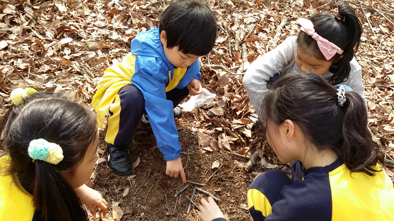 숲교육.jpg