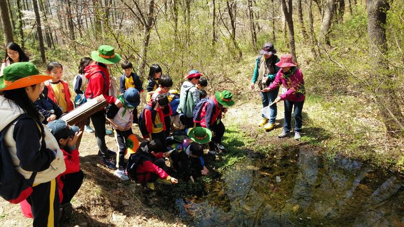 숲교육 중.jpg